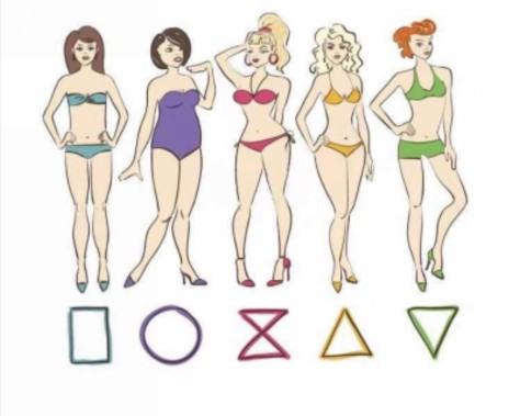 Five categories: H-type, apple-type, hourglass, pear-type, and inverted triangle.